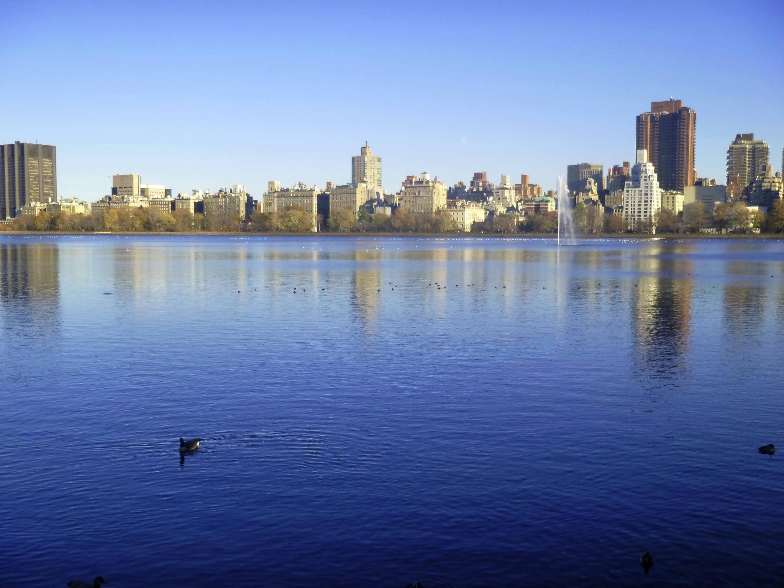 Jacqueline Kennedy Onassis Reservoir in Central Park.