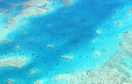 Coral sea from air