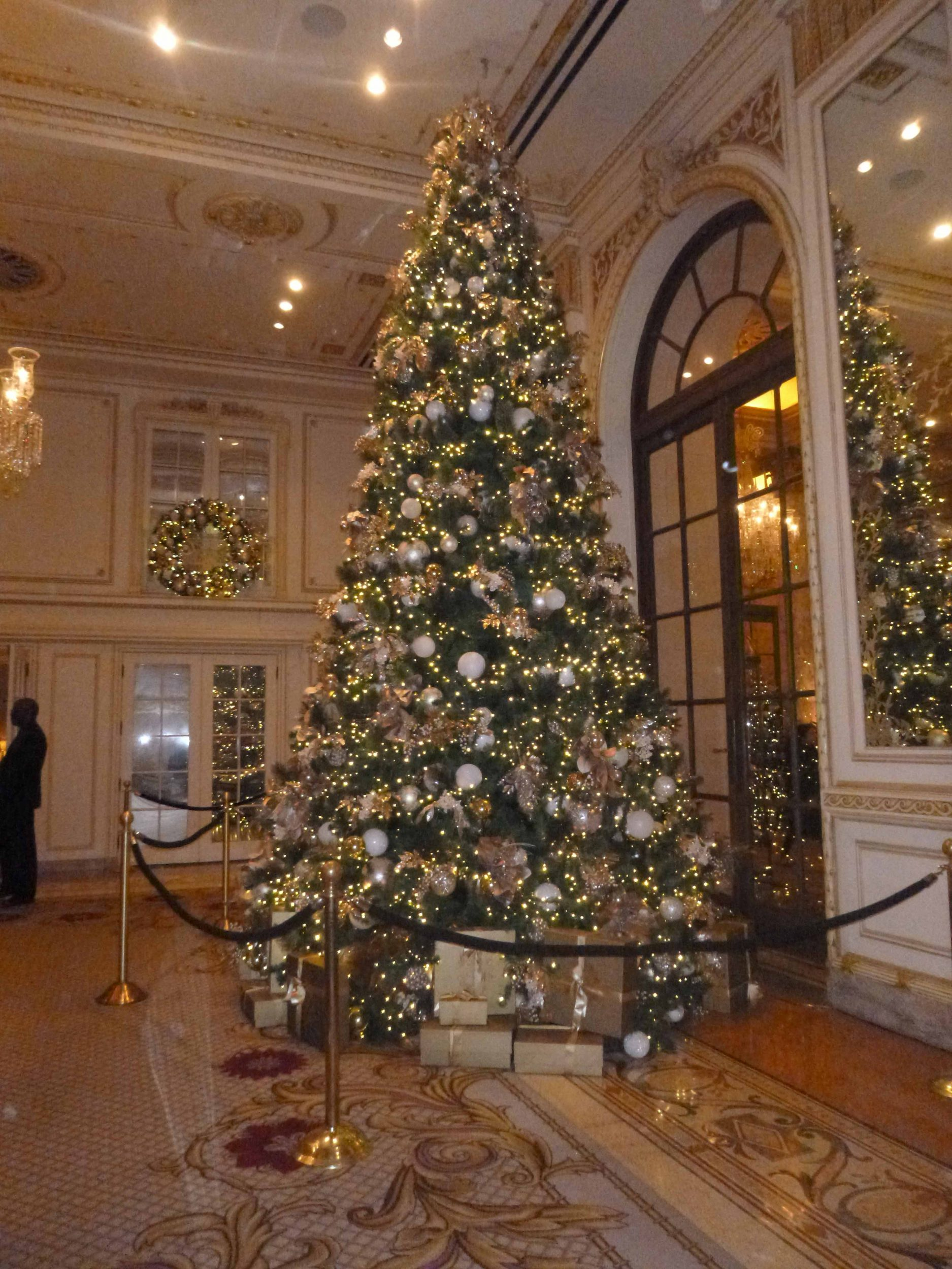 The stunning Christmas tree at the New York Plaza hotel.