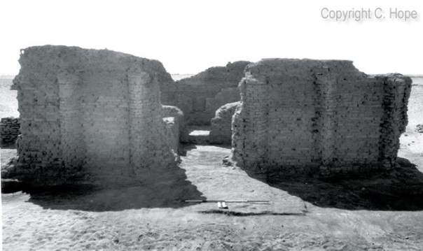 A view of the northern wall, entrance and remains of the portico of South Tomb 4 with a niche visible in the southern wall of Room 3